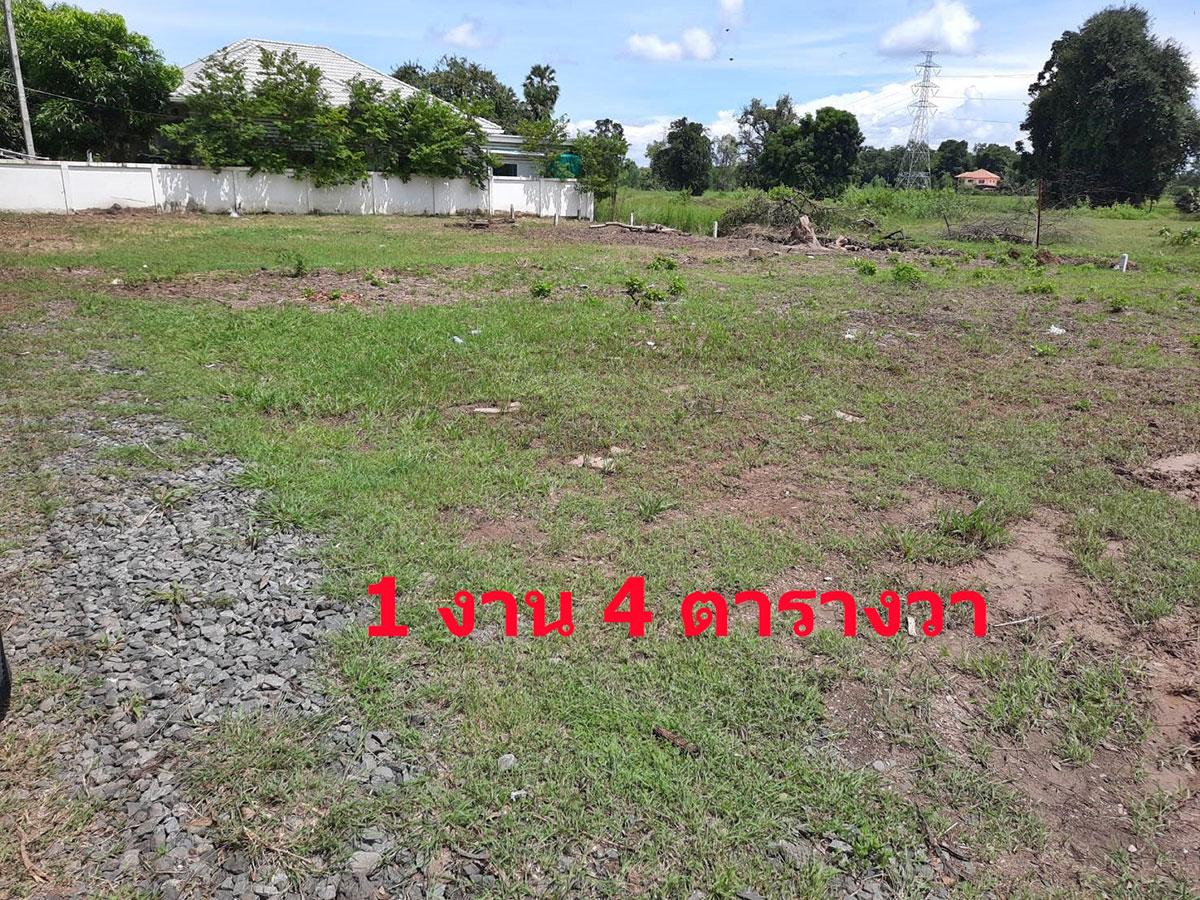 Buriram Land Plot Sale Price